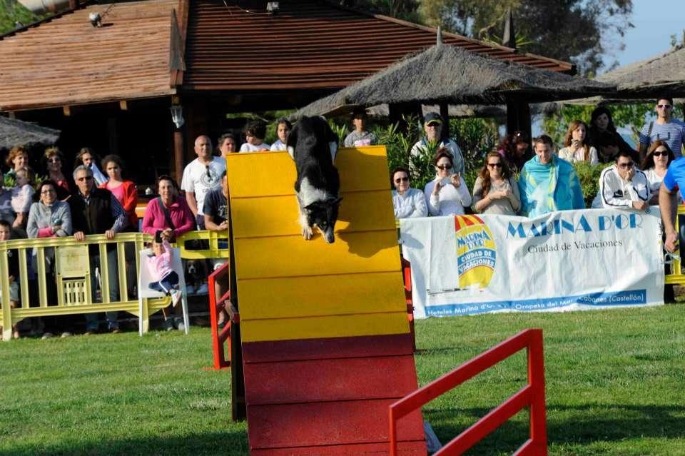 Exhibición en Decathlon Gijón – Sabado 22 a las 18:00